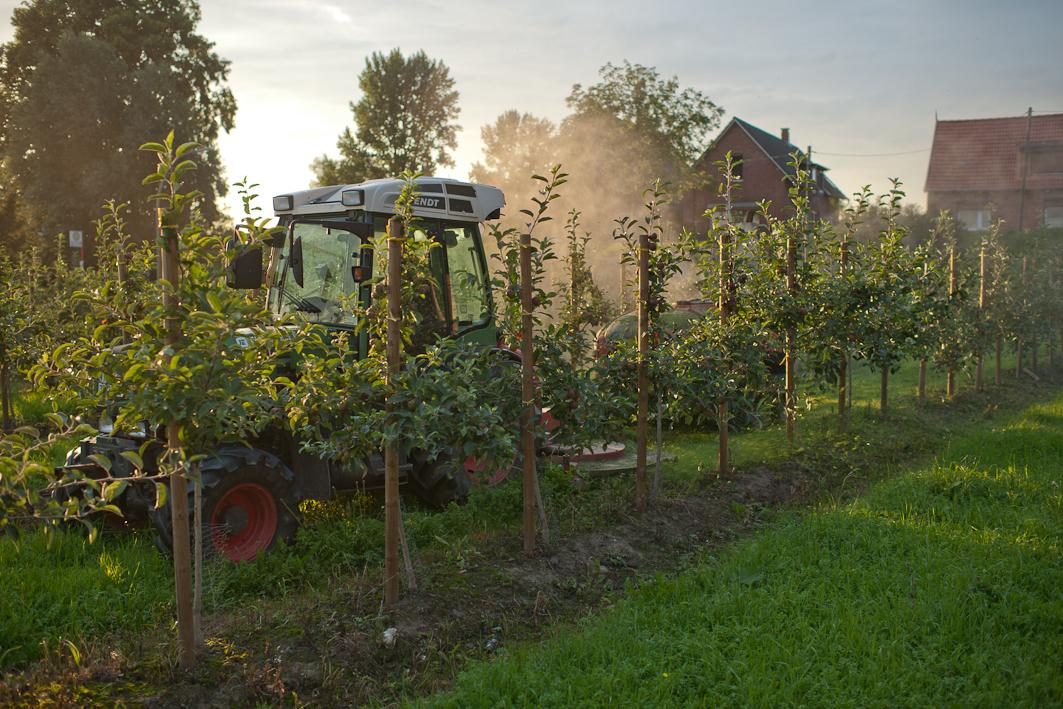 Im Obstbau werden moderne Maschinen eingesetzt